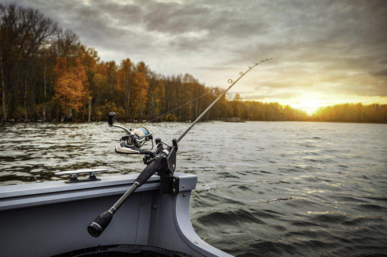 Wyjazd na ryby – jak się do niego przygotować?
